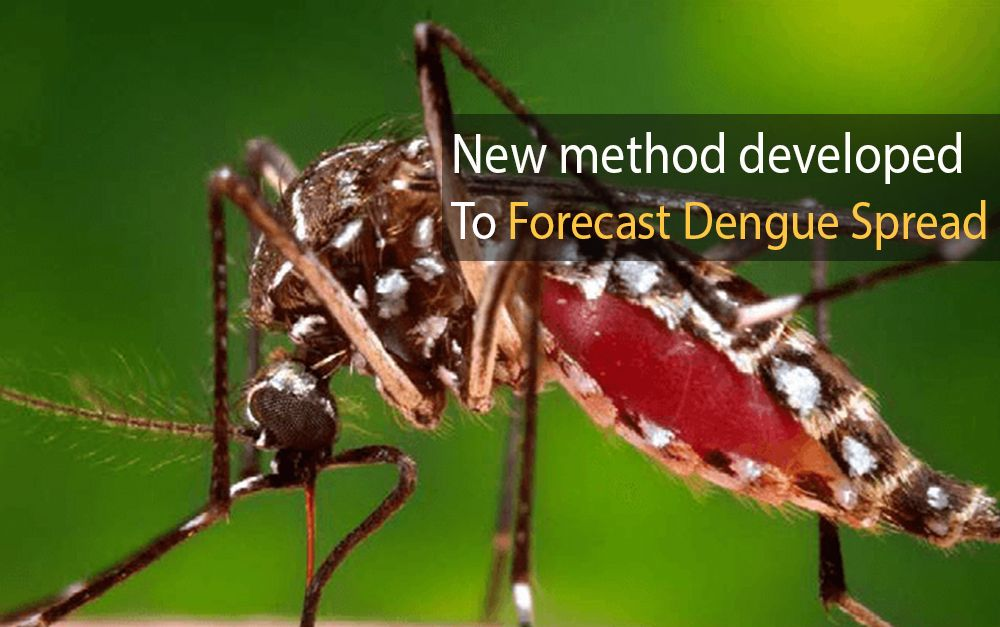Forecast dengue spread