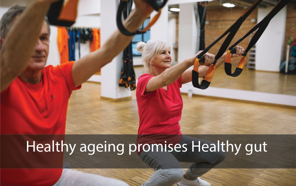 Healthy ageing promises healthy gut
