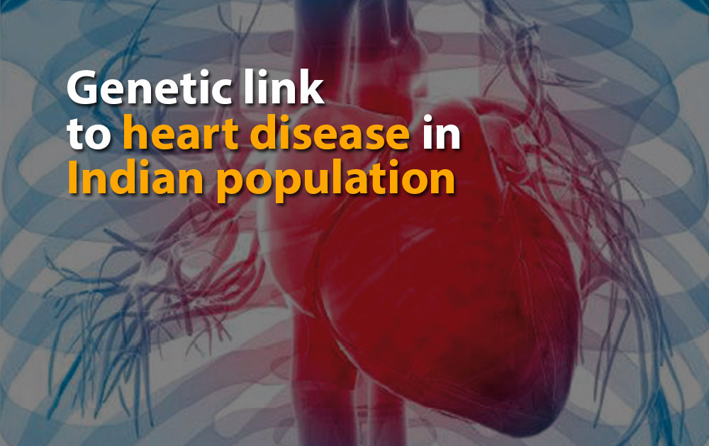 Genetic link to heart disease in Indian population