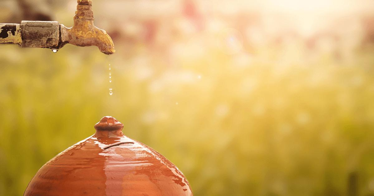The Ecosystem Restoration Process: Water